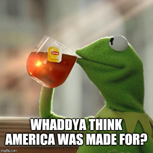 But That's None Of My Business Meme | WHADDYA THINK AMERICA WAS MADE FOR? | image tagged in memes,but thats none of my business,kermit the frog | made w/ Imgflip meme maker