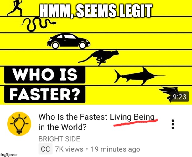 Wow, I love Brightside | HMM, SEEMS LEGIT | image tagged in brightside,seems legit,car,funny,facepalm | made w/ Imgflip meme maker