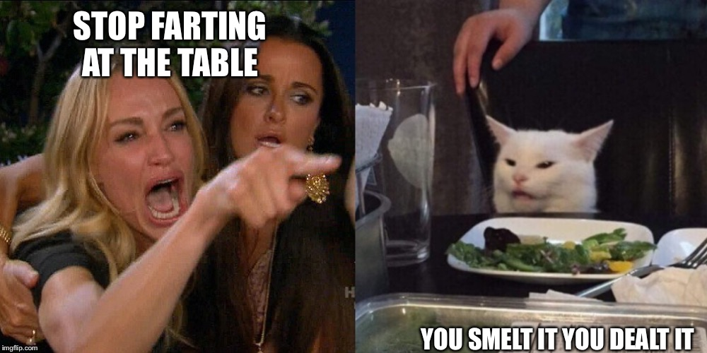 Woman yelling at cat | STOP FARTING AT THE TABLE YOU SMELT IT YOU DEALT IT | image tagged in woman yelling at cat | made w/ Imgflip meme maker