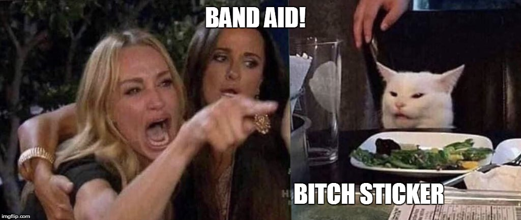 woman yelling at cat | BAND AID! B**CH STICKER | image tagged in woman yelling at cat | made w/ Imgflip meme maker
