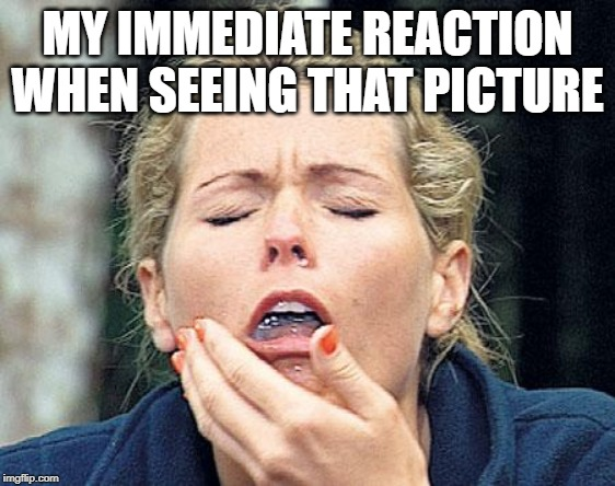 Gagging | MY IMMEDIATE REACTION WHEN SEEING THAT PICTURE | image tagged in gagging | made w/ Imgflip meme maker