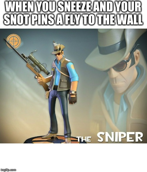 WHEN YOU SNEEZE AND YOUR SNOT PINS A FLY TO THE WALL | image tagged in the sniper | made w/ Imgflip meme maker