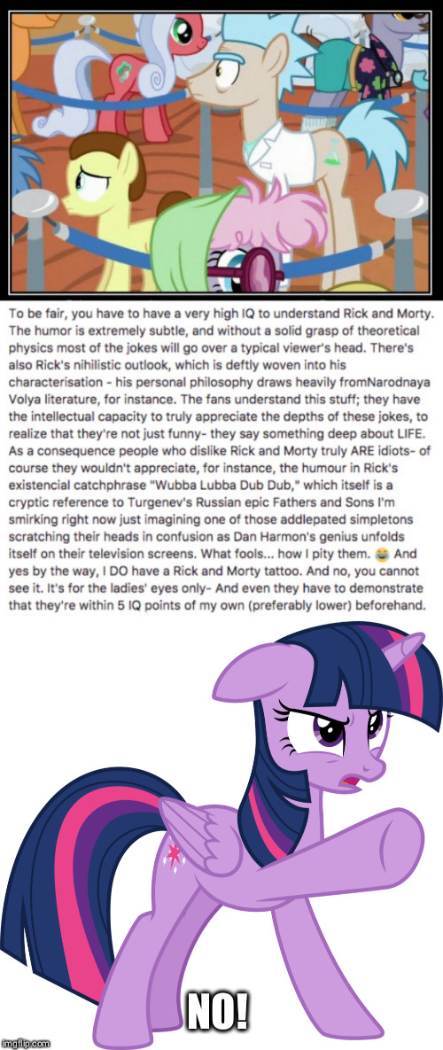 Twili disapproves | NO! | image tagged in funny,rick and morty,meme,twilight sparkle,mlp fim,iq | made w/ Imgflip meme maker