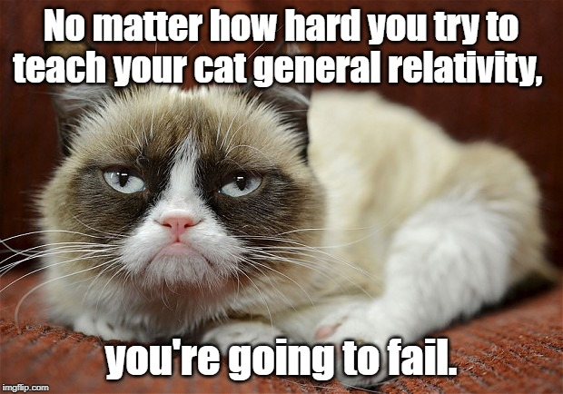 Teaching to cat | No matter how hard you try to teach your cat general relativity, you're going to fail. | image tagged in grumpy cat | made w/ Imgflip meme maker