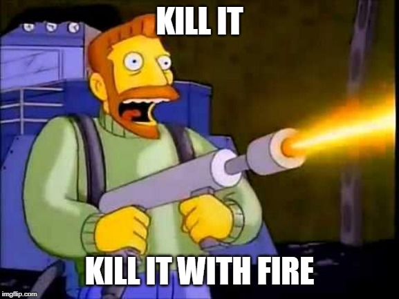 Kill it with fire | KILL IT KILL IT WITH FIRE | image tagged in kill it with fire | made w/ Imgflip meme maker