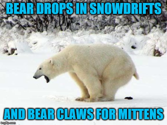 A few of his favorite things | BEAR DROPS IN SNOWDRIFTS AND BEAR CLAWS FOR MITTENS | image tagged in polar bear shits in the snow,meme,fun | made w/ Imgflip meme maker