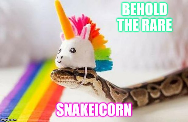 BEHOLD  THE RARE SNAKEICORN | image tagged in snake with unicorn hat | made w/ Imgflip meme maker