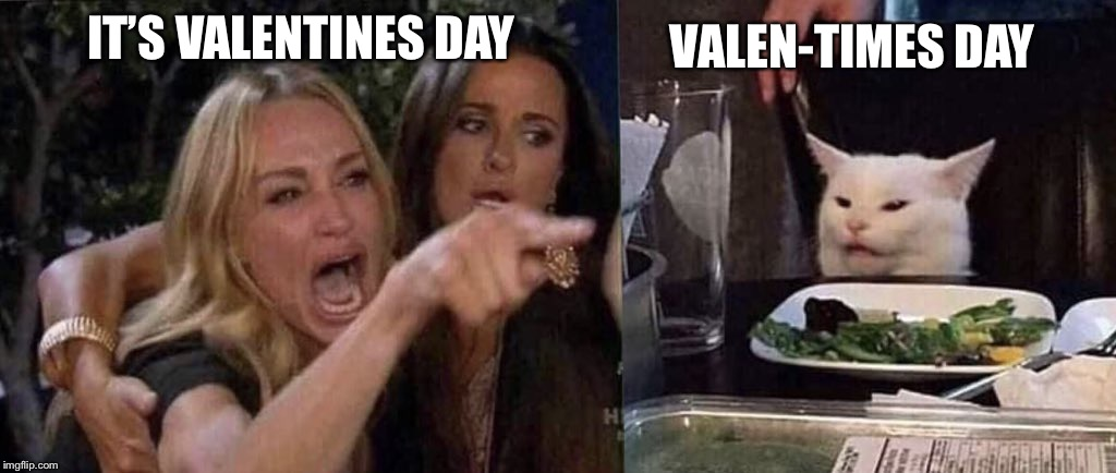 woman yelling at cat | IT'S VALENTINES DAY VALEN-TIMES DAY | image tagged in woman yelling at cat | made w/ Imgflip meme maker