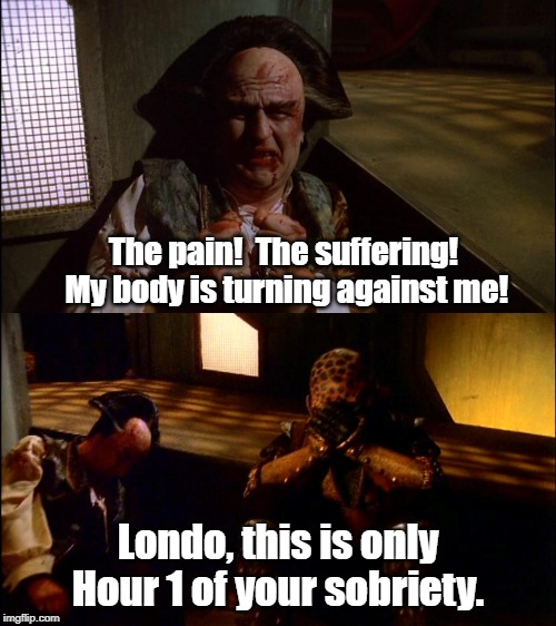 Sobriety isn't for everyone. | The pain!  The suffering!  My body is turning against me! Londo, this is only Hour 1 of your sobriety. | image tagged in babylon 5,sobriety | made w/ Imgflip meme maker