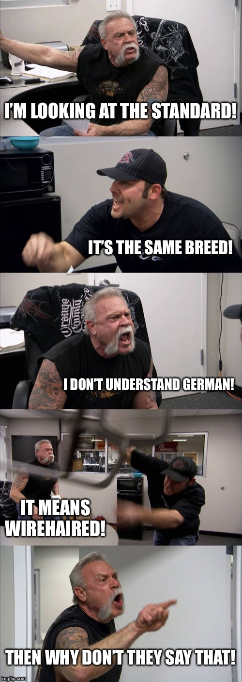 American Chopper Argument Meme | I'M LOOKING AT THE STANDARD! IT'S THE SAME BREED! I DON'T UNDERSTAND GERMAN! IT MEANS WIREHAIRED! THEN WHY DON'T THEY SAY THAT! | image tagged in memes,american chopper argument | made w/ Imgflip meme maker