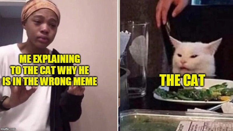 Me explaining to the cat |  ME EXPLAINING TO THE CAT WHY HE IS IN THE WRONG MEME; THE CAT | image tagged in me explaining to my mom,confused cat,memes,funny | made w/ Imgflip meme maker