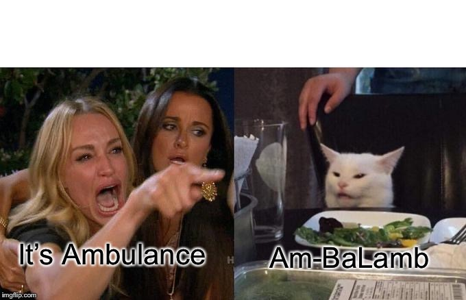 Woman Yelling At Cat Meme | It's Ambulance Am-BaLamb | image tagged in memes,woman yelling at cat | made w/ Imgflip meme maker