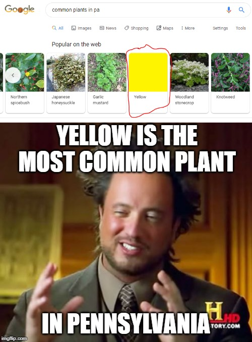 YELLOW IS THE MOST COMMON PLANT IN PENNSYLVANIA | image tagged in memes,ancient aliens | made w/ Imgflip meme maker