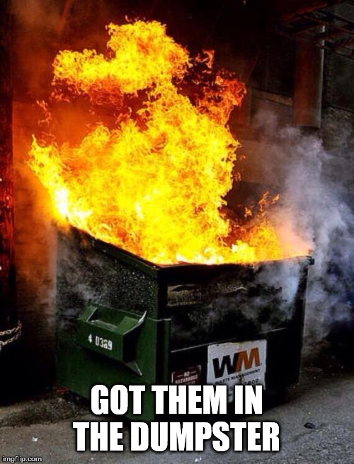 Dumpster Fire | GOT THEM IN THE DUMPSTER | image tagged in dumpster fire | made w/ Imgflip meme maker