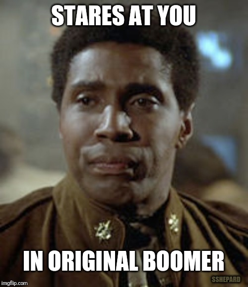Original Boomer | STARES AT YOU IN ORIGINAL BOOMER SSHEPARD | image tagged in boomer,battlestar galactica,stares | made w/ Imgflip meme maker