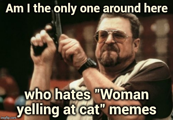 "Ditch that template | Am I the only one around here who hates ""Woman yelling at cat"" memes 