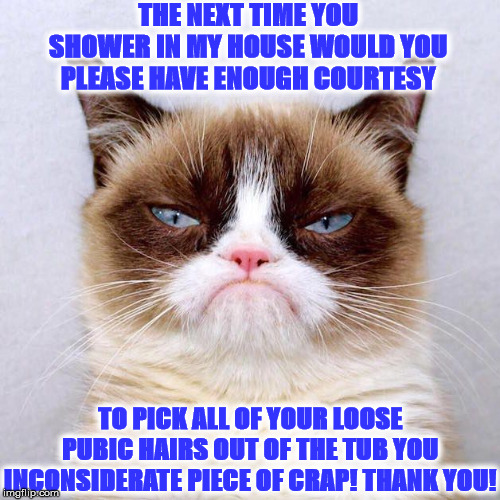 THE NEXT TIME YOU SHOWER IN MY HOUSE WOULD YOU PLEASE HAVE ENOUGH COURTESY TO PICK ALL OF YOUR LOOSE PUBIC HAIRS OUT OF THE TUB YOU INCONSID | image tagged in judgement grump | made w/ Imgflip meme maker