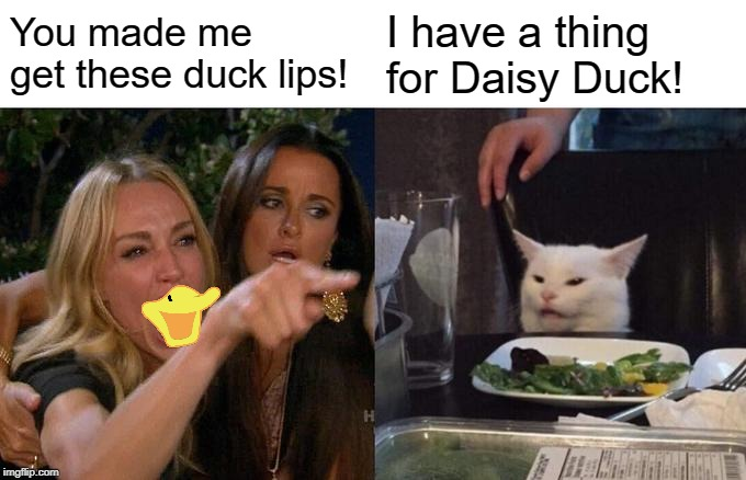 Woman Yelling At Cat Meme | You made me get these duck lips! I have a thing for Daisy Duck! | image tagged in memes,woman yelling at cat | made w/ Imgflip meme maker