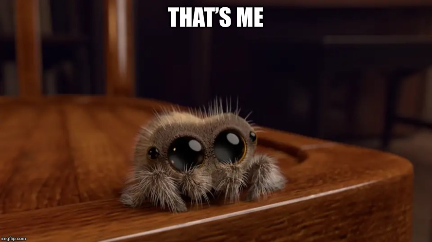Lucas the Spider | THAT'S ME | image tagged in lucas the spider | made w/ Imgflip meme maker