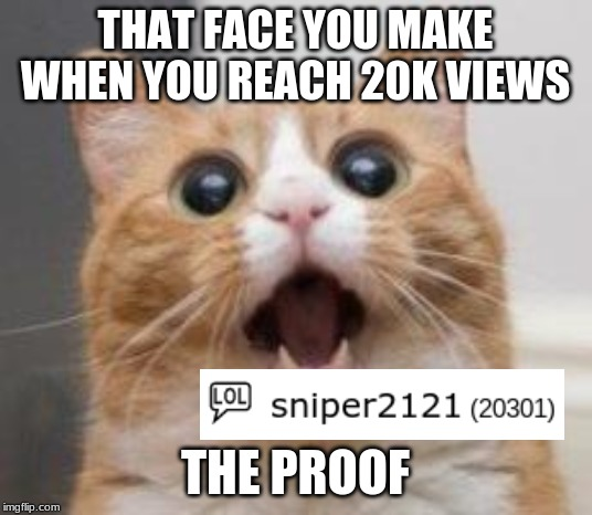 Wow | THAT FACE YOU MAKE WHEN YOU REACH 20K VIEWS THE PROOF | image tagged in wow | made w/ Imgflip meme maker