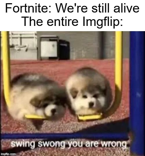 swing swong you are wrong |  Fortnite: We're still alive The entire Imgflip: | image tagged in swing,funny,memes,imgflip,fortnite | made w/ Imgflip meme maker