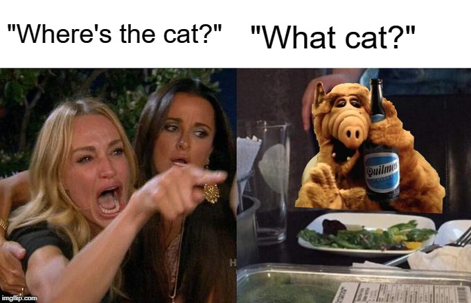 "Woman Yelling At Cat |  ""Where's the cat?""; ""What cat?"" 
