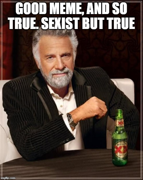 The Most Interesting Man In The World Meme | GOOD MEME, AND SO TRUE. SEXIST BUT TRUE | image tagged in memes,the most interesting man in the world | made w/ Imgflip meme maker