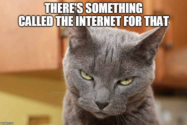 Try Me | THERE'S SOMETHING CALLED THE INTERNET FOR THAT | image tagged in try me | made w/ Imgflip meme maker