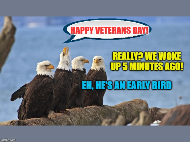 On Monday, take time to honor your friends and family who are Veterans... but wait until they're fully awake. :-) |  HAPPY VETERANS DAY! REALLY? WE WOKE UP 5 MINUTES AGO! EH, HE'S AN EARLY BIRD | image tagged in memes,funny,bald eagle,veterans day,early bird | made w/ Imgflip meme maker