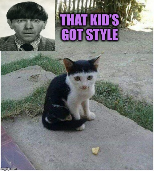 That cut bowls me over. | THAT KID'S GOT STYLE | image tagged in moehoward,bad haircut,memes,funny | made w/ Imgflip meme maker