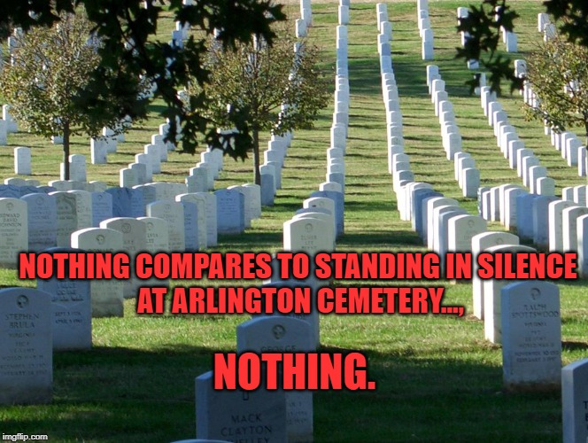 Nothing compares to standing in silence  at Arlington Cemetery. | NOTHING COMPARES TO STANDING IN SILENCE  AT ARLINGTON CEMETERY..., NOTHING. | image tagged in veterans day,vets | made w/ Imgflip meme maker