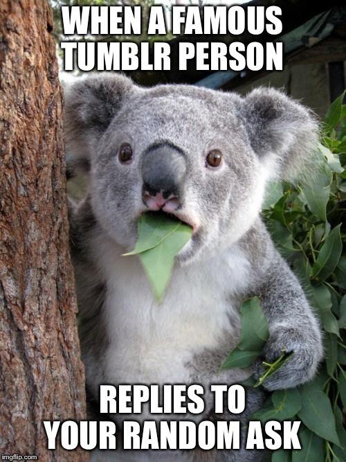 Surprised Koala |  WHEN A FAMOUS TUMBLR PERSON; REPLIES TO YOUR RANDOM ASK | image tagged in memes,surprised koala | made w/ Imgflip meme maker
