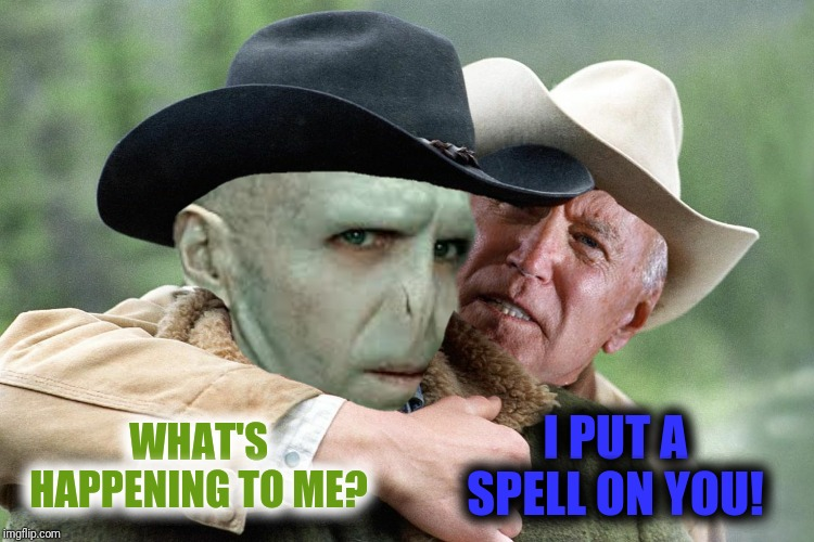 WHAT'S HAPPENING TO ME? I PUT A SPELL ON YOU! | made w/ Imgflip meme maker