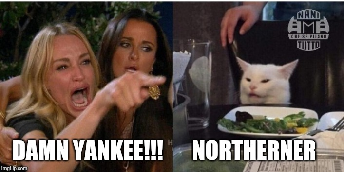 white cat table |  DAMN YANKEE!!! NORTHERNER | image tagged in white cat table | made w/ Imgflip meme maker