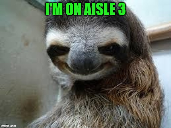 Creepy sloth | I'M ON AISLE 3 | image tagged in creepy sloth | made w/ Imgflip meme maker