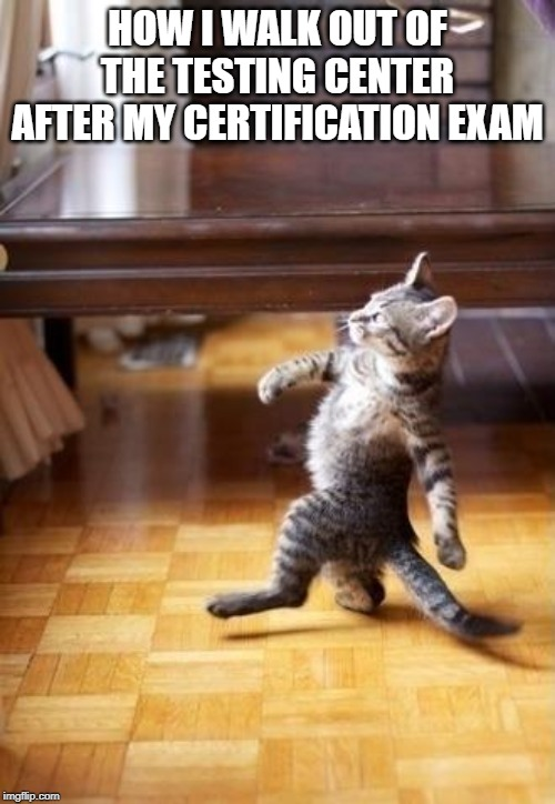 Cool Cat Stroll |  HOW I WALK OUT OF THE TESTING CENTER AFTER MY CERTIFICATION EXAM | image tagged in memes,cool cat stroll | made w/ Imgflip meme maker
