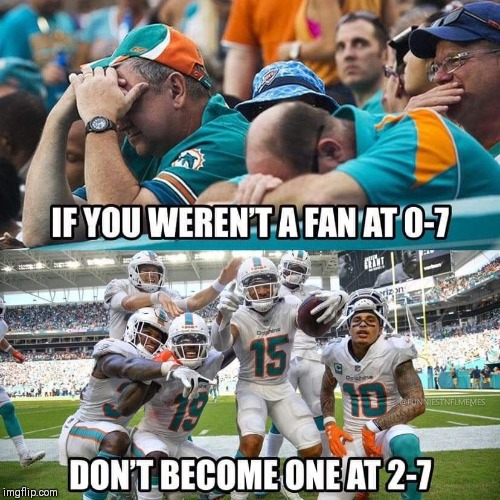 image tagged in nfl memes,miami dolphins,winning,fishy | made w/ Imgflip meme maker