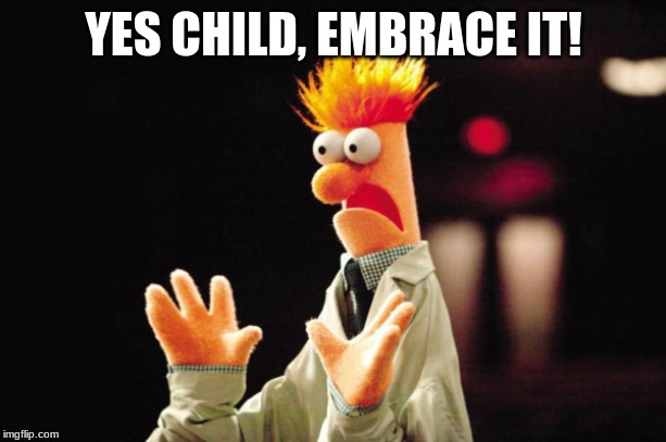 Beaker Freak Out | YES CHILD, EMBRACE IT! | image tagged in beaker freak out | made w/ Imgflip meme maker