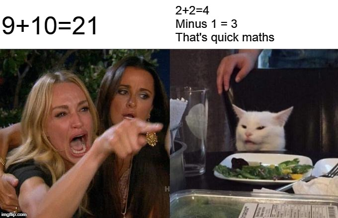 Woman Yelling At Cat |  2+2=4 Minus 1 = 3 That's quick maths; 9+10=21 | image tagged in memes,woman yelling at cat | made w/ Imgflip meme maker