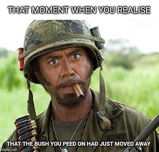 Internal scream with visible confusion | THAT MOMENT WHEN YOU REALISE THAT THE BUSH YOU PEED ON HAD JUST MOVED AWAY | image tagged in robert downey jr tropic thunder | made w/ Imgflip meme maker