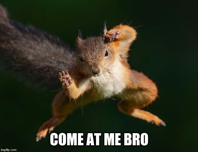 COME AT ME BRO | image tagged in come at me bro | made w/ Imgflip meme maker
