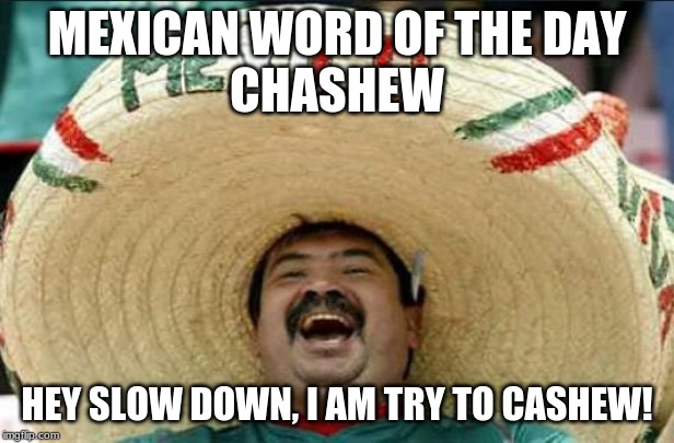 mexican word of the day | MEXICAN WORD OF THE DAY CHASHEW HEY SLOW DOWN, I AM TRY TO CASHEW! | image tagged in mexican word of the day | made w/ Imgflip meme maker