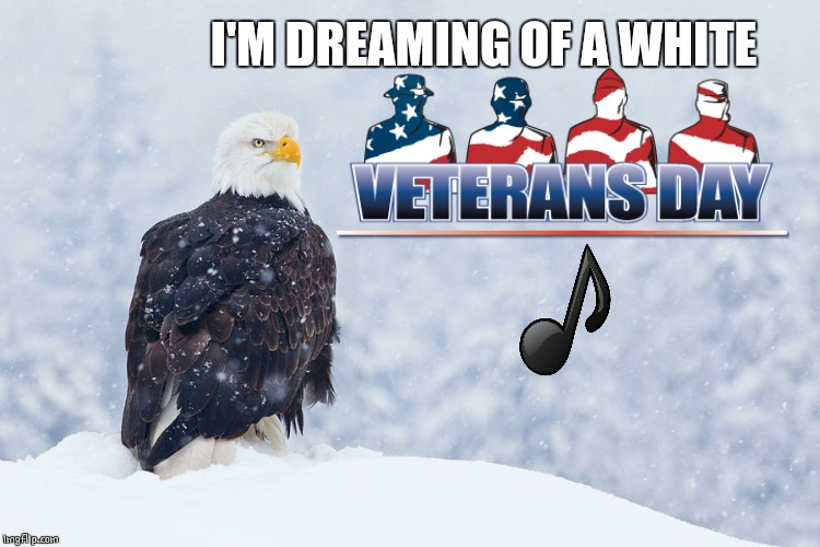 HAPPY VETERANS DAY! |  I'M DREAMING OF A WHITE | image tagged in veterans day,snow | made w/ Imgflip meme maker