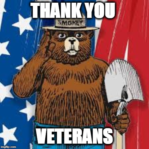 THANK YOU VETERANS |  THANK YOU; VETERANS | image tagged in smokey bear,veterans,veterans day,veteran,american flag,smokey | made w/ Imgflip meme maker