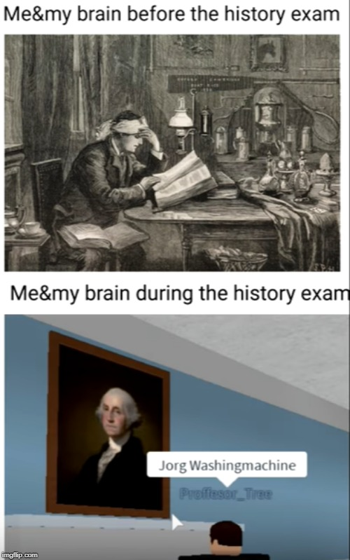My brain during an exam | image tagged in memes,funny,roblox,history,gorge,brain | made w/ Imgflip meme maker