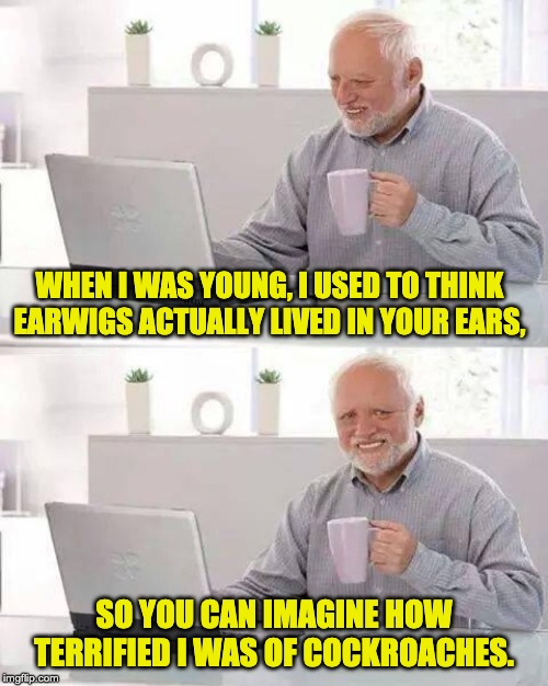 Hide the Pain Harold Meme | WHEN I WAS YOUNG, I USED TO THINK EARWIGS ACTUALLY LIVED IN YOUR EARS, SO YOU CAN IMAGINE HOW TERRIFIED I WAS OF COCKROACHES. | image tagged in memes,hide the pain harold | made w/ Imgflip meme maker
