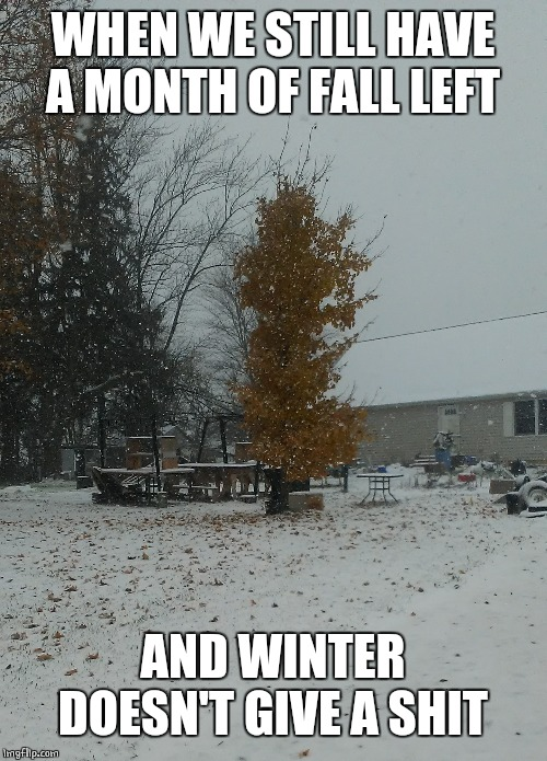 WINTER TIME EARLY? |  WHEN WE STILL HAVE A MONTH OF FALL LEFT; AND WINTER DOESN'T GIVE A SHIT | image tagged in winter is coming,winter,fall,snow | made w/ Imgflip meme maker