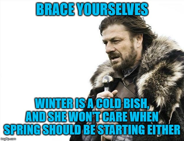 Brace Yourselves X is Coming Meme | BRACE YOURSELVES WINTER IS A COLD BISH, AND SHE WON'T CARE WHEN SPRING SHOULD BE STARTING EITHER | image tagged in memes,brace yourselves x is coming | made w/ Imgflip meme maker