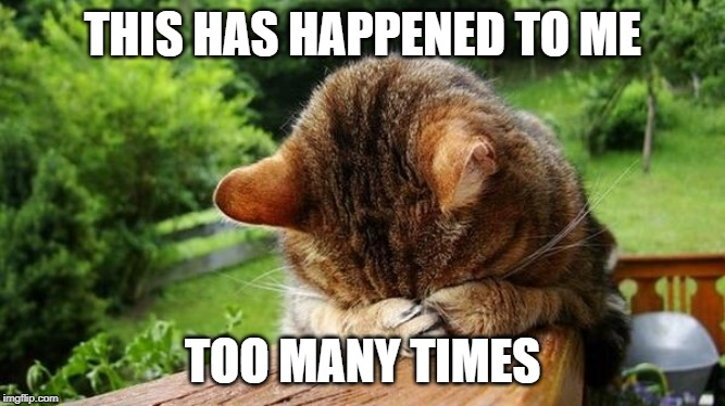 Embarrassed Cat | THIS HAS HAPPENED TO ME TOO MANY TIMES | image tagged in embarrassed cat | made w/ Imgflip meme maker