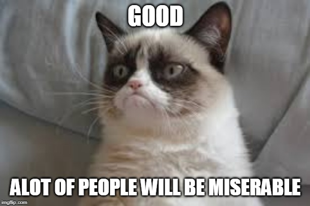 Grumpy cat | GOOD ALOT OF PEOPLE WILL BE MISERABLE | image tagged in grumpy cat | made w/ Imgflip meme maker